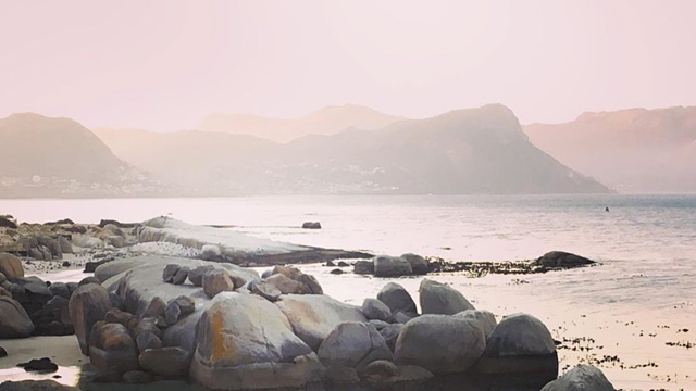 Bosky Dell Accommodation on Boulders Beach | Self Catering Accommodation in Simonstown | Simonstown Accommodation
